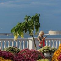На выставке цветов :: Александр Пушкарёв