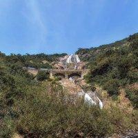 Дудхсагар (Dudhsagar) — один из крупнейших водопадов Индии,находящийся в предгорье Западных Гат. :: Александр Вивчарик