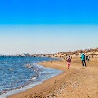 Осенний пляж... :: Елена Васильева