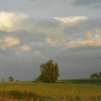 Затишье перед бурей. :: nadyasilyuk Вознюк