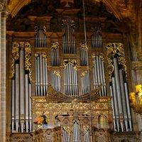 Орган, Кафедральный Собор Барселоны :: Михаил Сбойчаков