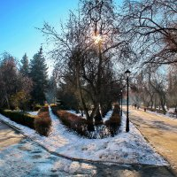 Осенний солнечный день в парке. :: Пётр Сесекин