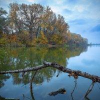 Осенним пасмурным утром :: Denis Aksenov