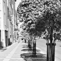 Городские улицы. :: Инна Малявина
