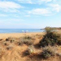Дикий пляж Алагади - место, где откладывают яйца большие черепахи :: Anna Lipatova