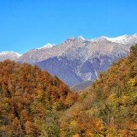 Горы большого Сочи :: Николай Николенко