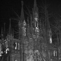 Католический собор на м. Грузинской :: Yulia Sherstyuk