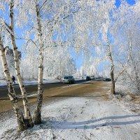 вот и зима в городе :: Алексей Белик