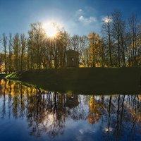 зеркало :: Laryan1