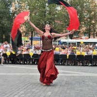 танец   с  платками :: Valentina Lujbimova [lotos 5]