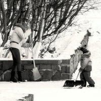 Большая помощь маленького помошника :: Роман Маркин