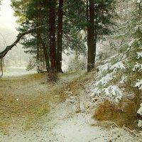 Осенний снег. :: Николай Елисеев