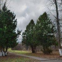 Уголок старого парка. :: Юрий