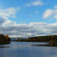 Сентябрьский пруд... :: анна нестерова