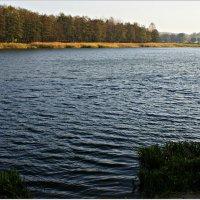 Осень. Река Лава. :: Валерия Комова