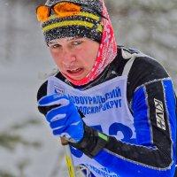 Трудная гонка :: vladimir Bormotov