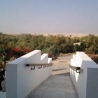Спуск к реке Иордан. :: Жанна Викторовна