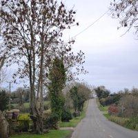 Дороги Ирландии. :: zoja