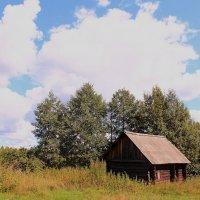 Облака из ваты :: Татьяна Ломтева