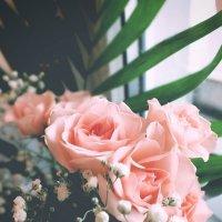 Розы :: Ksenia Bahcha