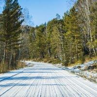 Дорога на перевал. :: юрий Амосов