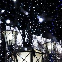 Ночь, улица... и снег :: Людмила Синицына
