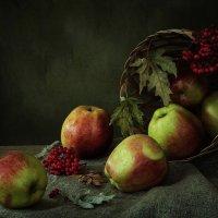 Белорусские яблочки :: Ирина Приходько