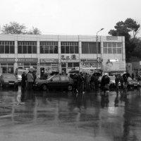 Дождь зануда,дождь зазнайка :: Наталья Джикидзе (Берёзина)