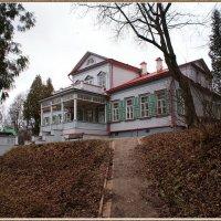 Дом с мезонином :: Николай Дони