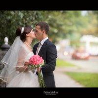 23/08/2014 Дмитрий и Майя :: Galina Malkova