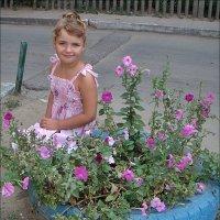 В цветах петунии :: Нина Корешкова
