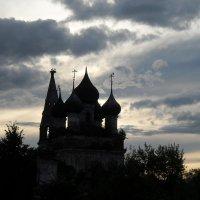 День на исходе. Семья аистов, семь поколений. :: Святец Вячеслав