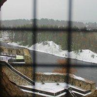 из башни :: Наталья Трифонова