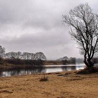 Песчаный берег теплит дрожь... :: Лесо-Вед (Баранов)