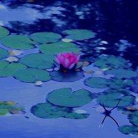 Вдохновляясь Клодом Моне:гармония Синего и Пурпурного :: Ирина Сивовол