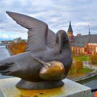 Чайка. :: Валерия Комова