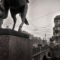 кони :: Владимир Иванов ( Vlad   Petrov)