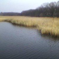 Озеро осенью :: Миша Любчик