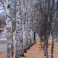 Ноябрь :: Николина Вишнякова