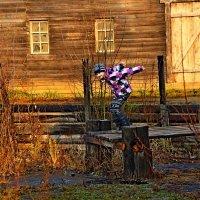 Прыжок :: Сергей Cel