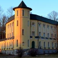 Почти замок. :: Светлана Никольская