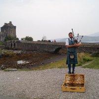 Шотландская мелодия :: Natalia Harries