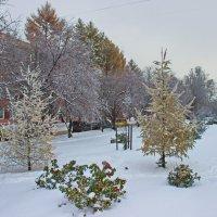 Первый снег в городе :: val-isaew2010 Валерий Исаев
