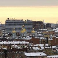 Петербург с высоты птичьего полёта... :: Марина Павлова