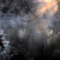 Навстречу тайнам ноябрьского утра...2. :: Андрей Войцехов