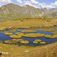 В горах Абхазии :: Алексей Никитин
