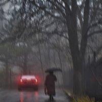 Поздняя осень :: Nina Streapan