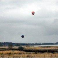 Воздушные шары. :: Владимир Валов