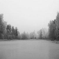 Лесное озеро - ноябрь :: Энжи ...