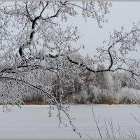 Зимнее озеро :: Николай Дементьев